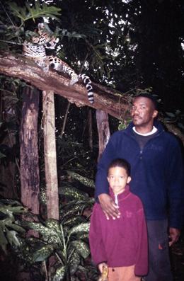 environmental-leopard