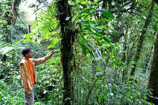 environmental-saving_planet_earth